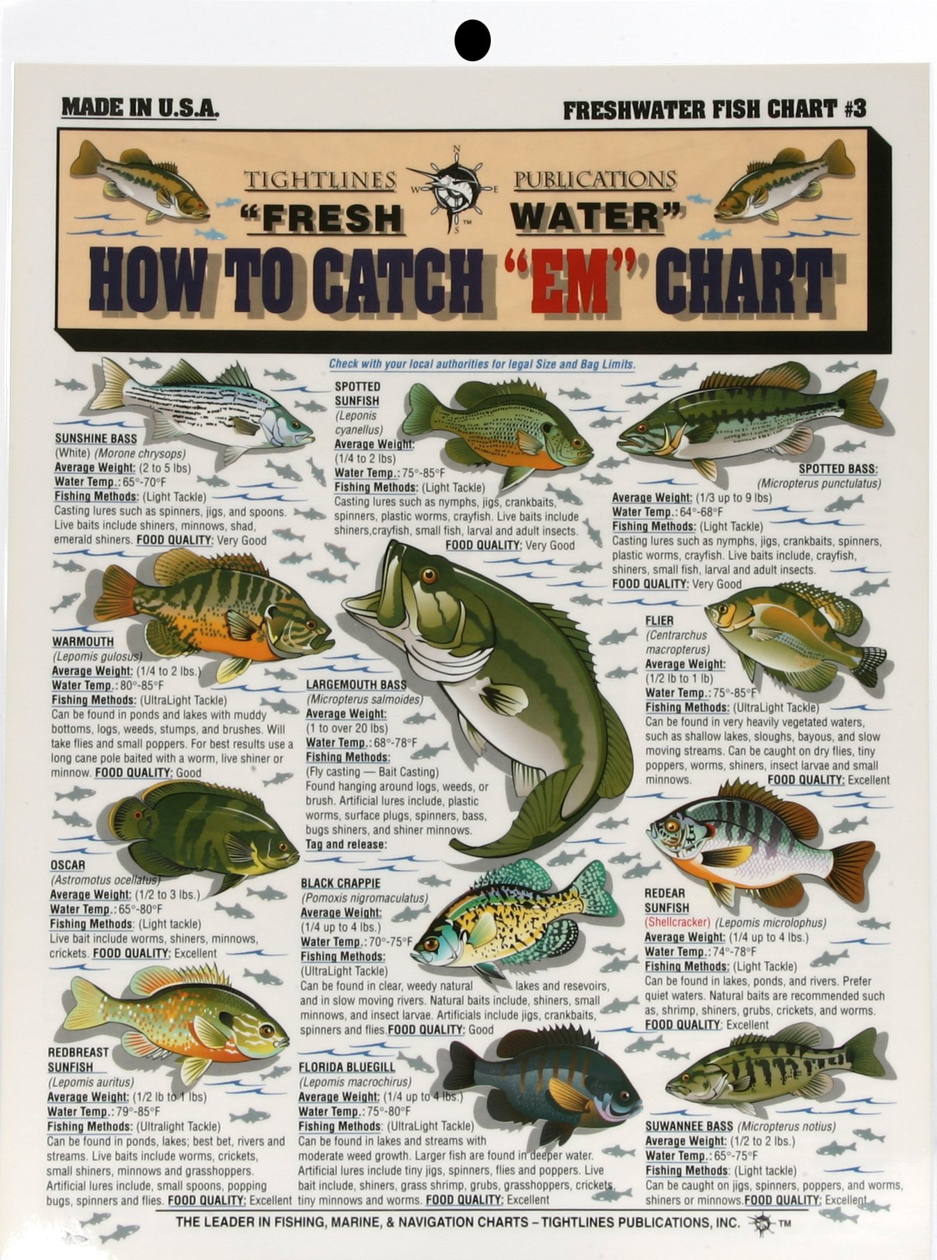 Fishermans Freshwater Fish Chart 3 Buy Online In United Arab Emirates At Desertcart