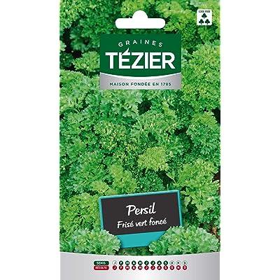 Seed Bag Dark Green Curly Parsley Tezier : Garden & Outdoor