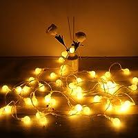 Cadena de Luces Cadena de Bombillas 5m 50 LED Blanco Cálido Guirnaldas Luces Globo con Enchufe, Mando a Distancia,Impermeable,Luces Decoración para Jardín, Habitación, Navidad, Fiesta, Boda