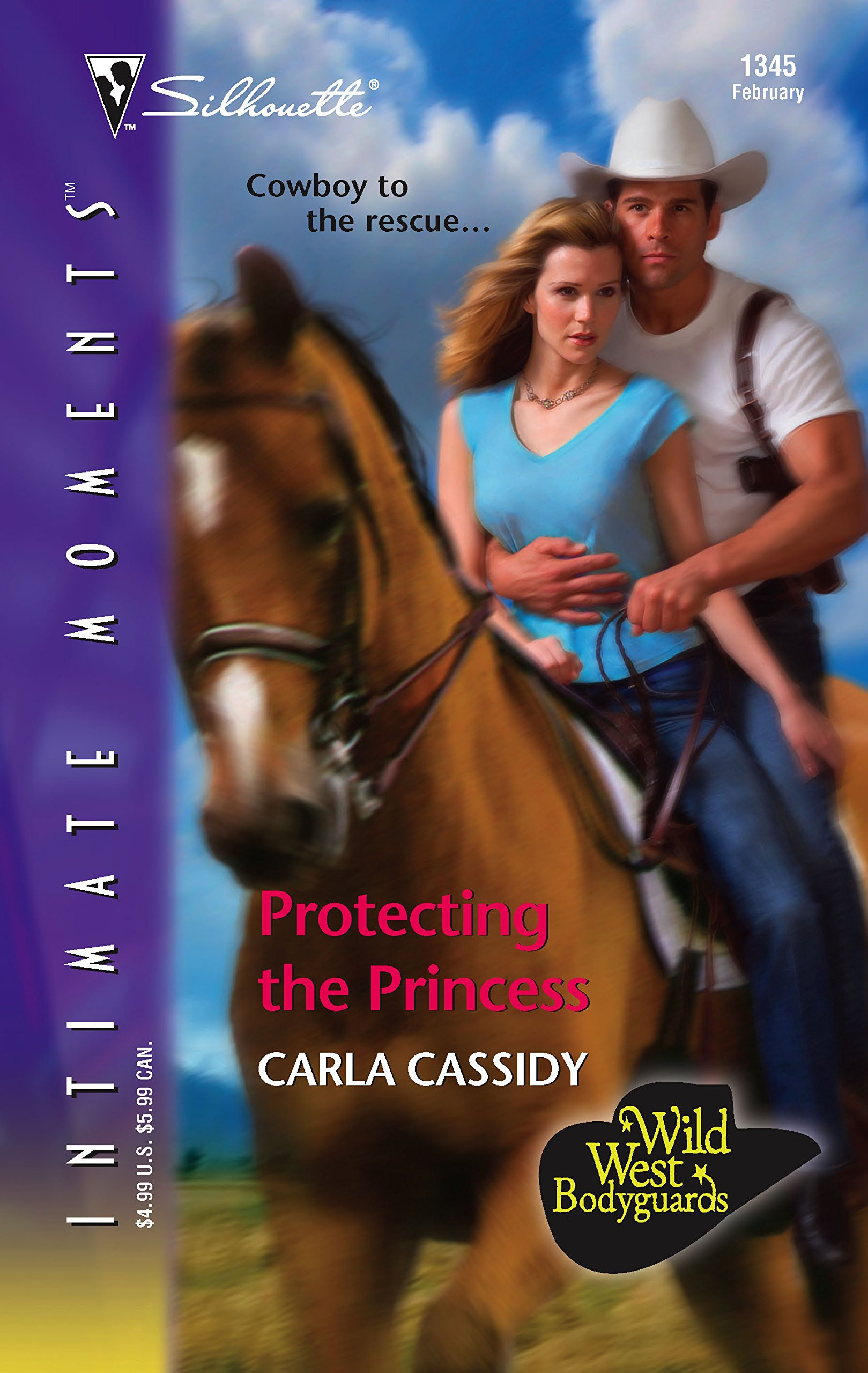 Download Protecting The Princess (Silhouette Intimate Moments) (Wild West Bodyguards) pdf epub