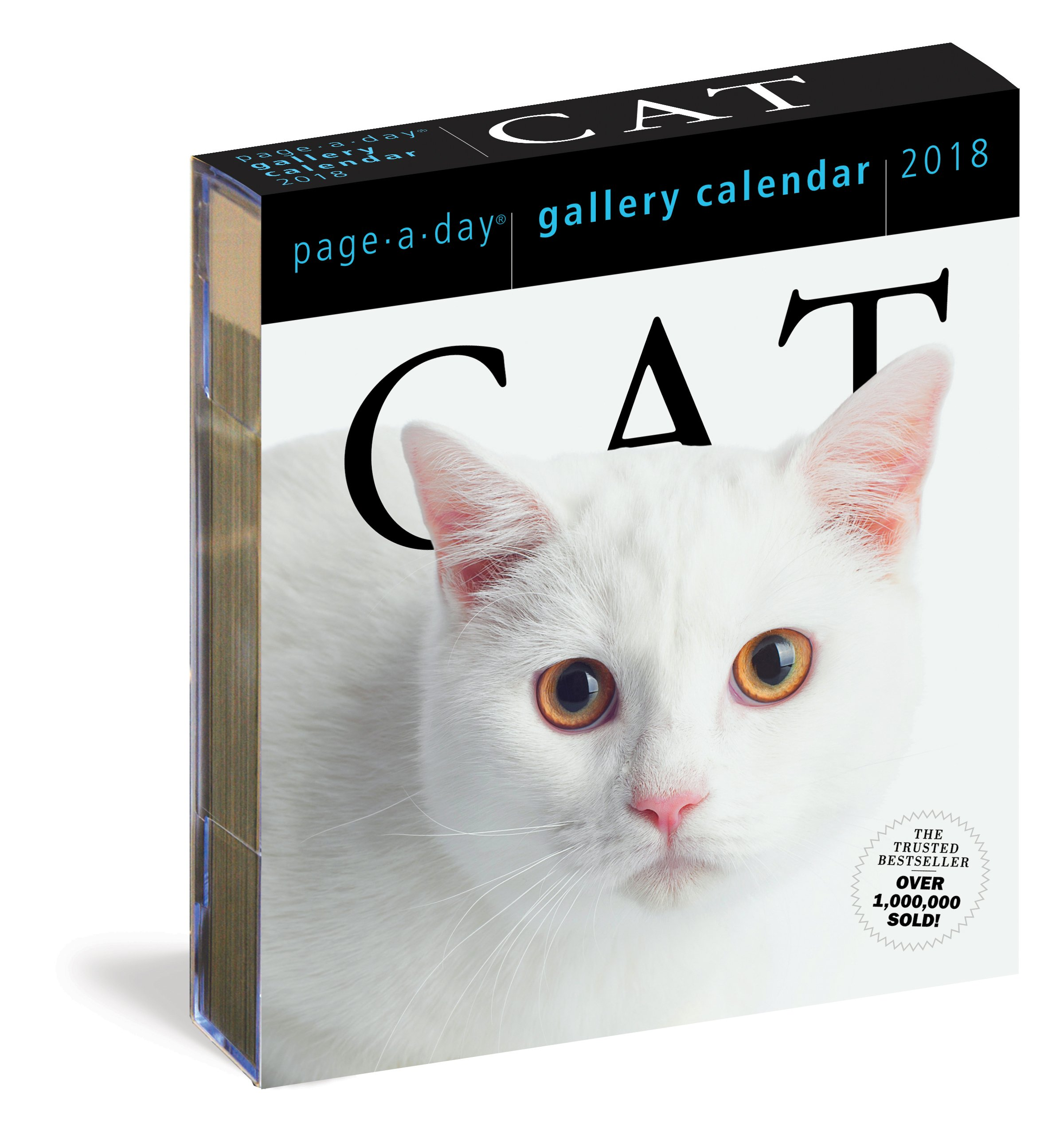 Cat Page-A-Day Gallery Calendar 2018: Amazon.es: Workman ...