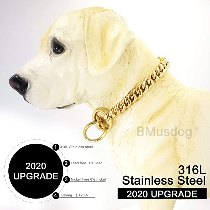 10 to 24in BMusdog Gold Dog Chain Collar 10MM Choke Collar Stainless Steel Metal Collars Silp Choker Chain for Small Medium Large Dogs