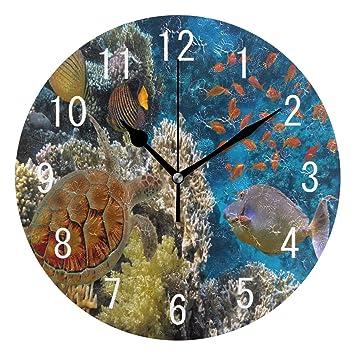 ... Sea Turtle Coral Reef Peces Redondo acrílico Reloj de Pared no Rasgado silencioso Reloj Arte para Sala de Estar Cocina Dormitorio: Amazon.es: Hogar