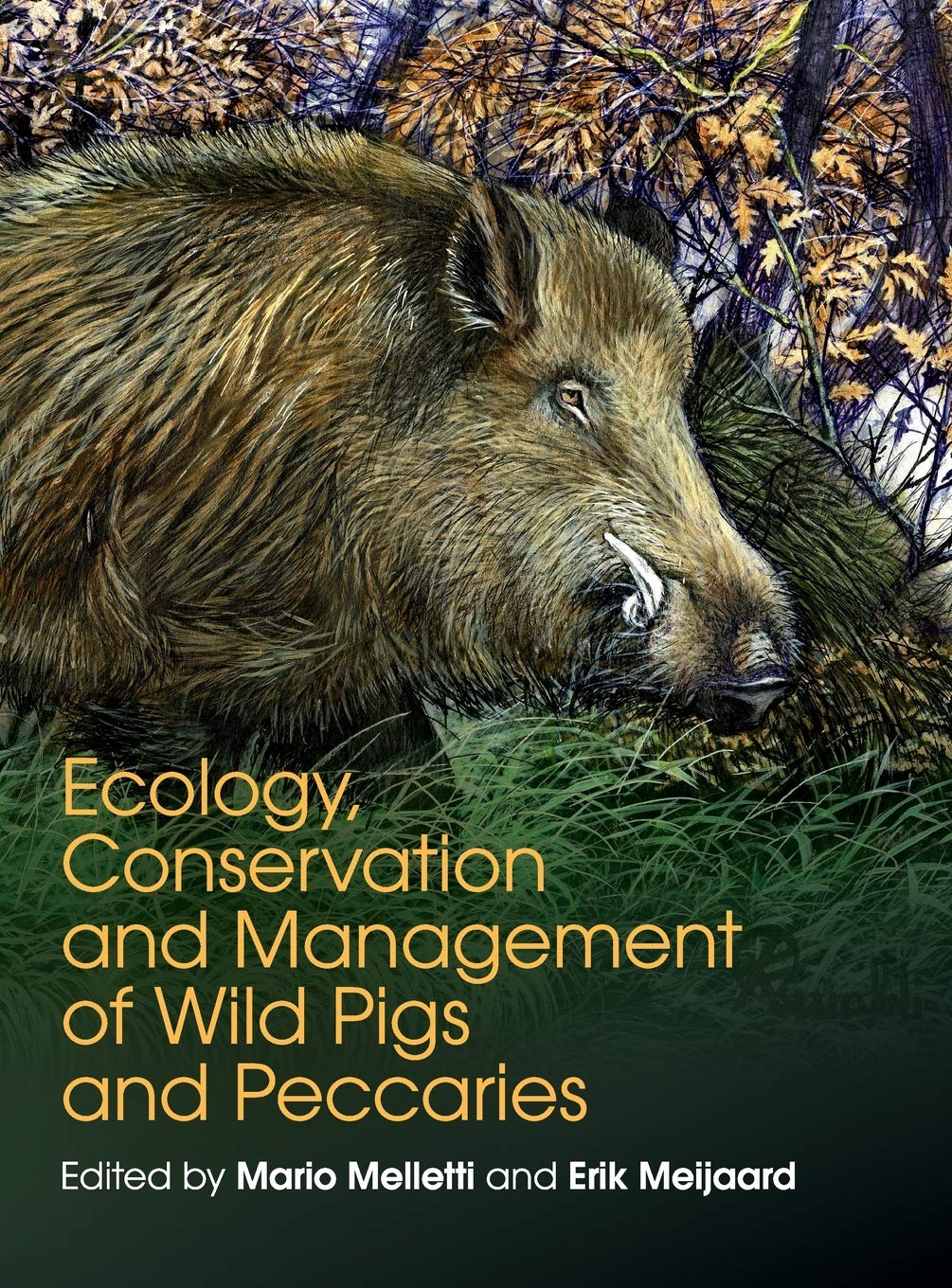 Wildlife Ecology Conservation and Management