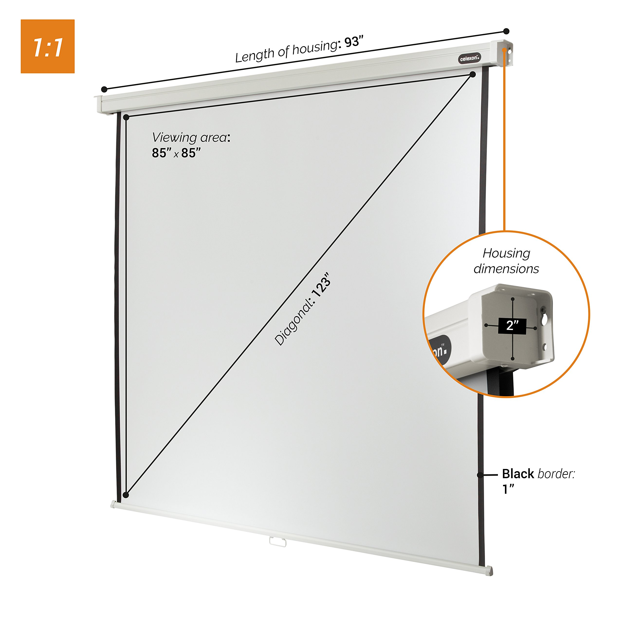 "celexon 122"" Manual Pull Down Projector Screen Manual Professional, 85 x 85 inches viewing area, 1:1 format, Gain factor of 1.2 by Celexon (Image #2)"