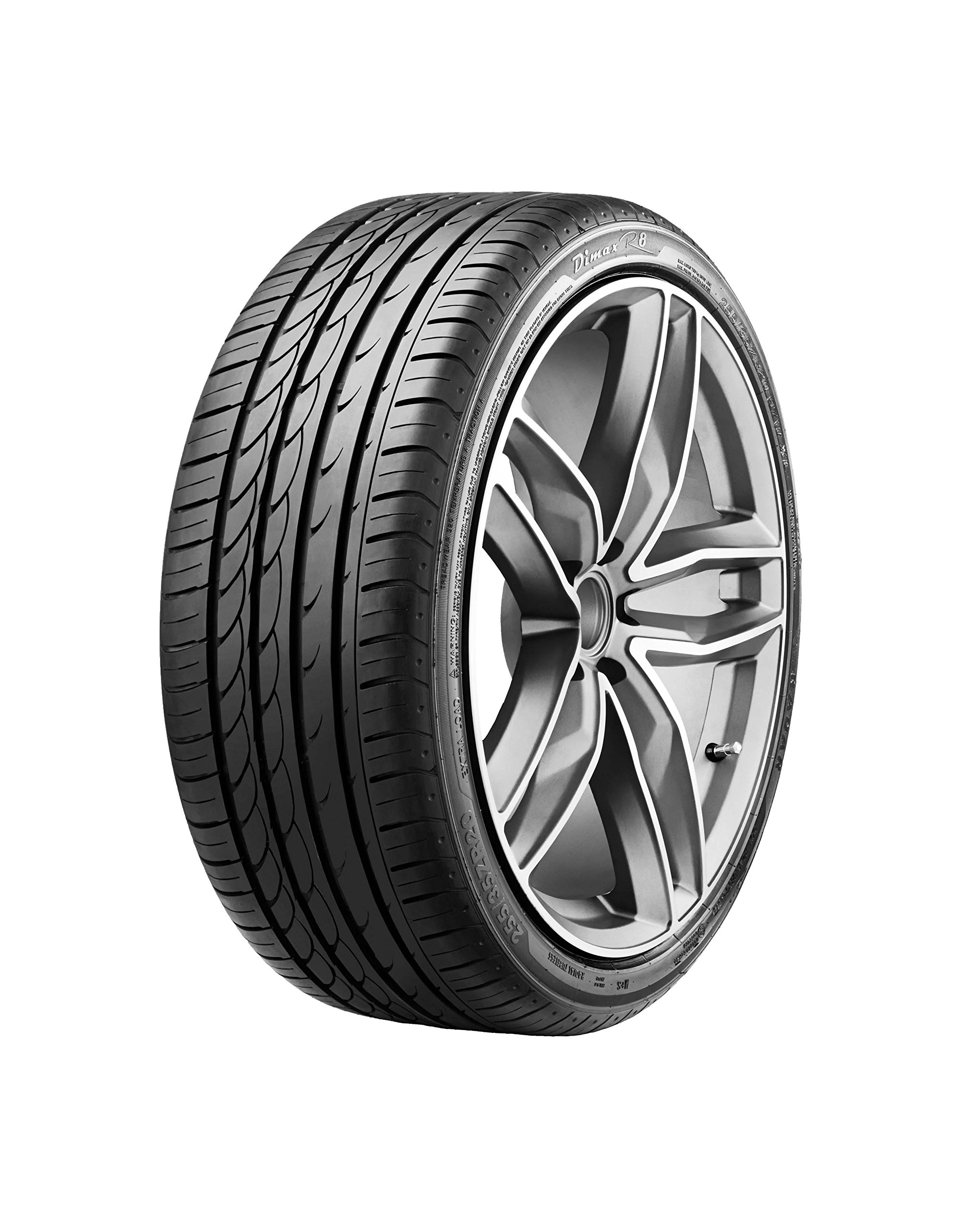 Radar Tires Dimax R8 Performance Radial Tire - 205/45ZR17 88Y
