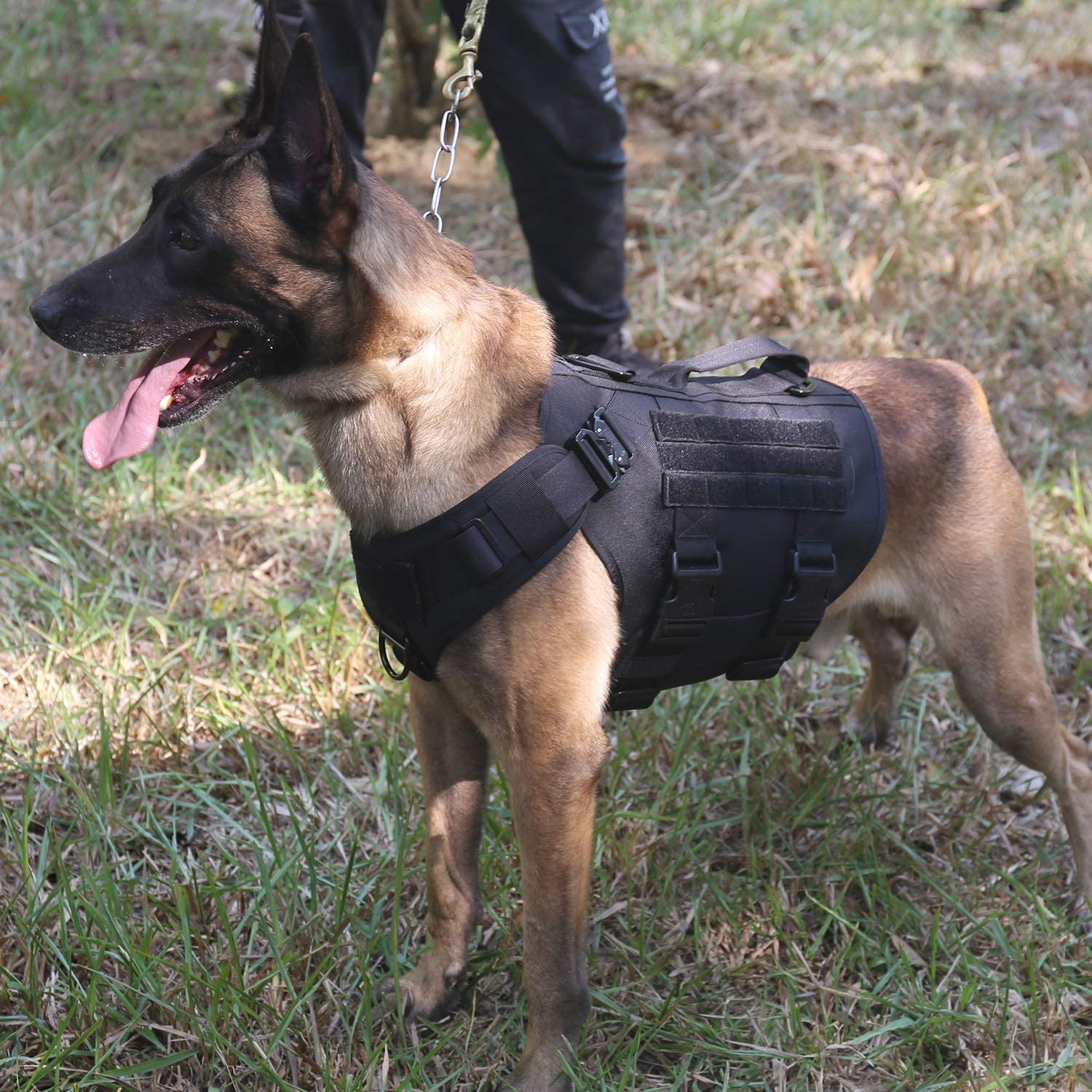 Hook and Loop Panel for ID Patch,No Pulling Front Clip ICEFANG Tactical Dog Operation Harness with 6X Buckle,Dog Molle Vest with Handle,3//4 Body