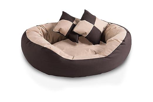 BedDog 4 en 1 SABA beige/marron L aprox. 65x50cm colchón para perro, 7 colores, cama para perro, sofá para perro, cesta para perro: Amazon.es: Coche y moto