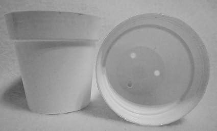 Amazon white plastic flower pot 2 14 diameter x 2 tall 50 white plastic flower pot 2 14quot diameter x 2quot mightylinksfo