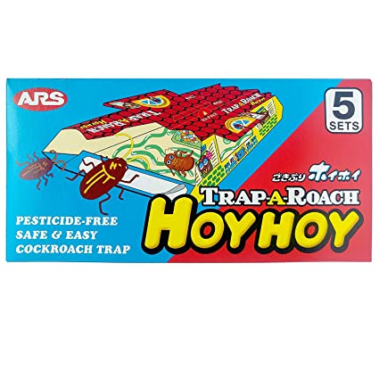 Amazon.com: Hoy Hoy trampa a Roach 5 trampas: Sports & Outdoors