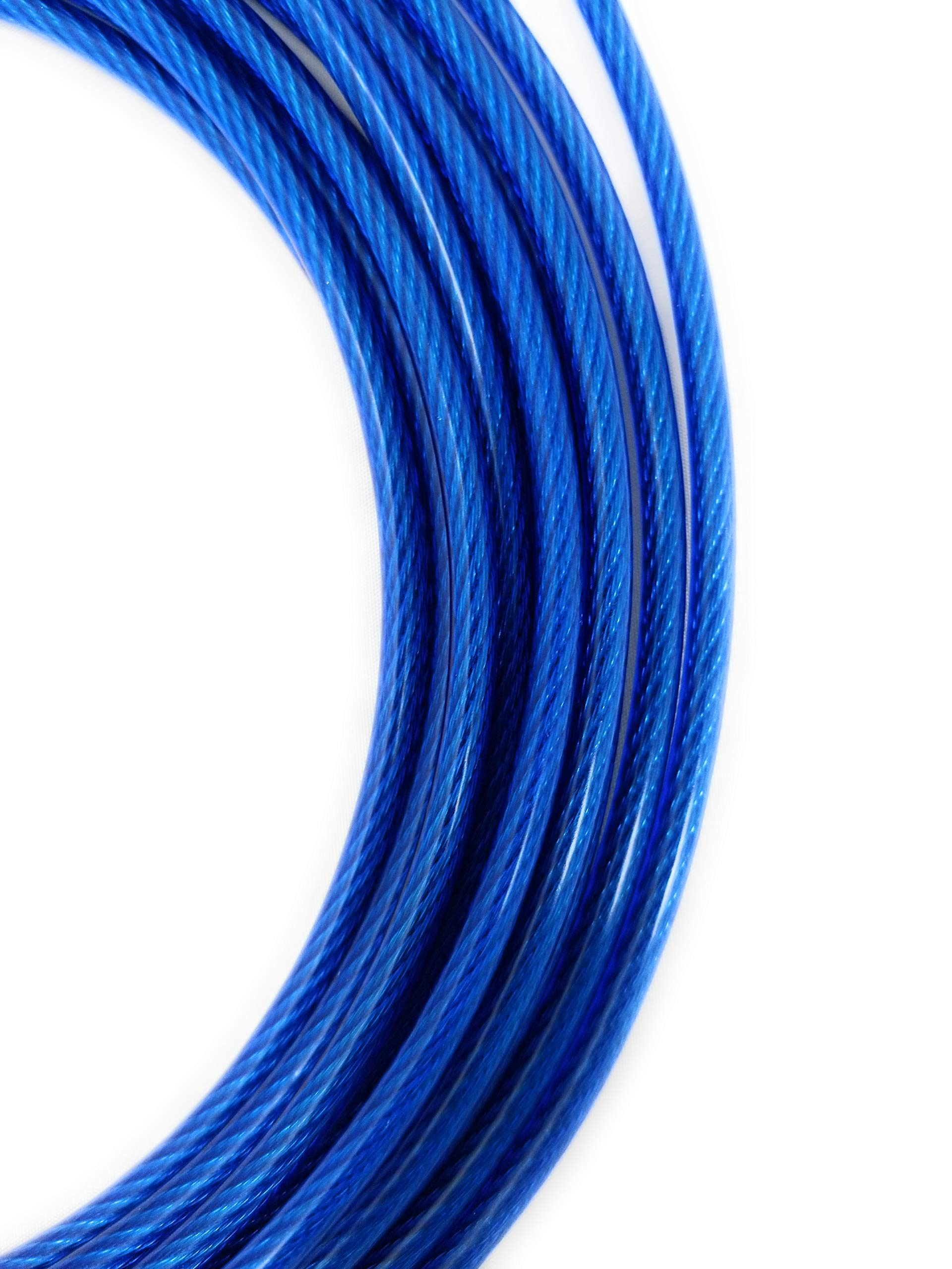 Xavier Training Solutions Stake and Tie Out Combo for Dogs   20ft. Cable Leash Pet Tether System Blue   18″ Spiral Stake