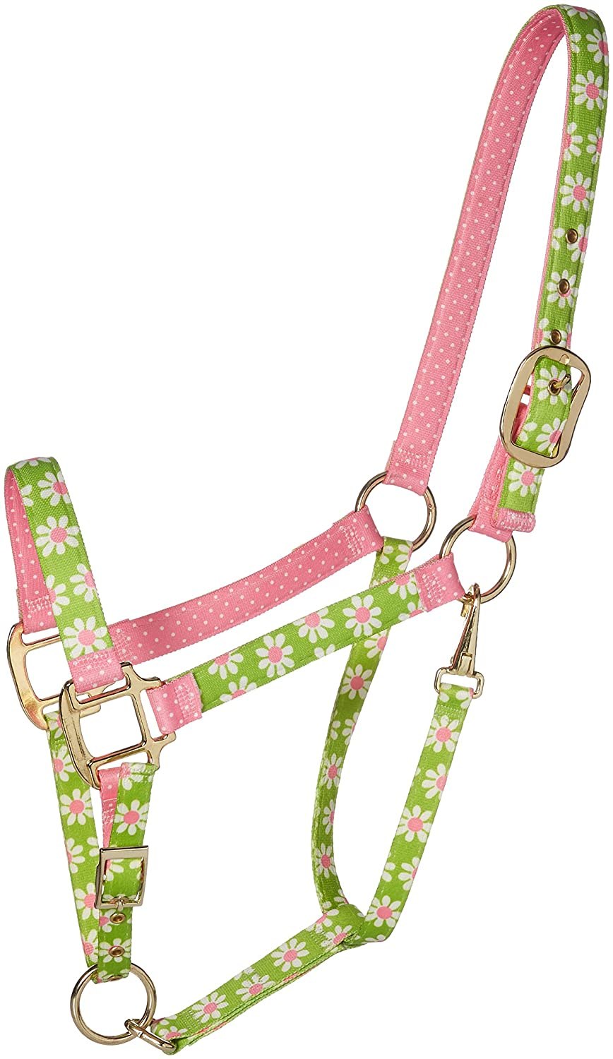 Red Haute Horse GD1203 A High Fashion Horse Horse Halter, Green Daisy
