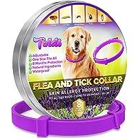 toldi Tratamiento-de-pulgas-para-Perros, Collar-antipulgas-Perros Ajustable, 8 Meses de protección-contra-pulgas-y…