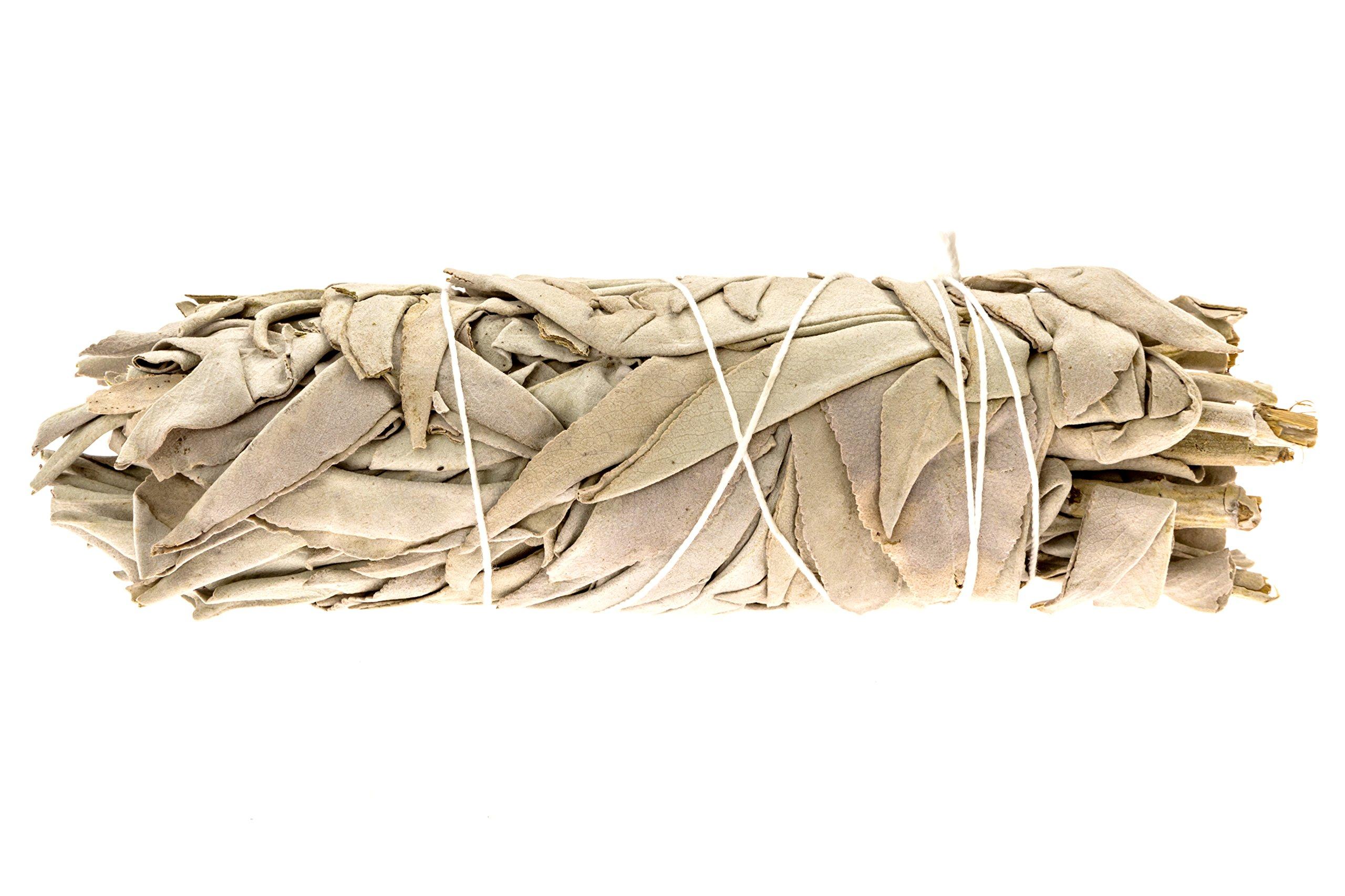 Alternative Imagination Premium California White Sage Smudge Sticks - 5 Inch Medium Sized - Package of 3 by Alternative Imagination (Image #2)