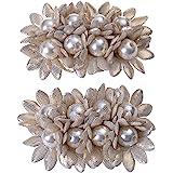 Douqu Shoes Dress Hat Accessories Fashion Rhinestones Crystal Shoe Clips 2 Pcs Multi Color