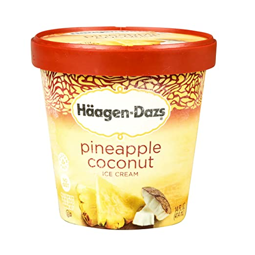 Haagen-Dazs, Destination Series Belgian Chocolate Ice Cream, Pint (8 Count): Amazon.com: Grocery & Gourmet Food