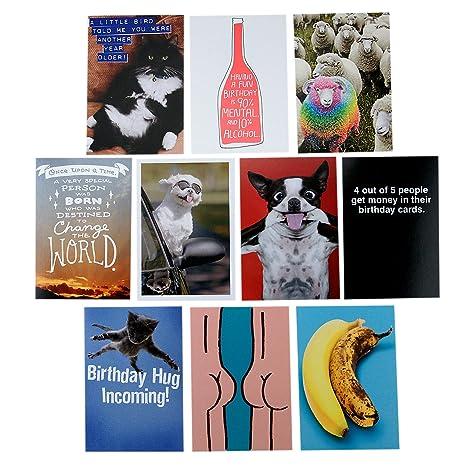 Amazon hallmark shoebox funny birthday greeting cards hallmark shoebox funny birthday greeting cards assortment 10 cards with envelopes m4hsunfo