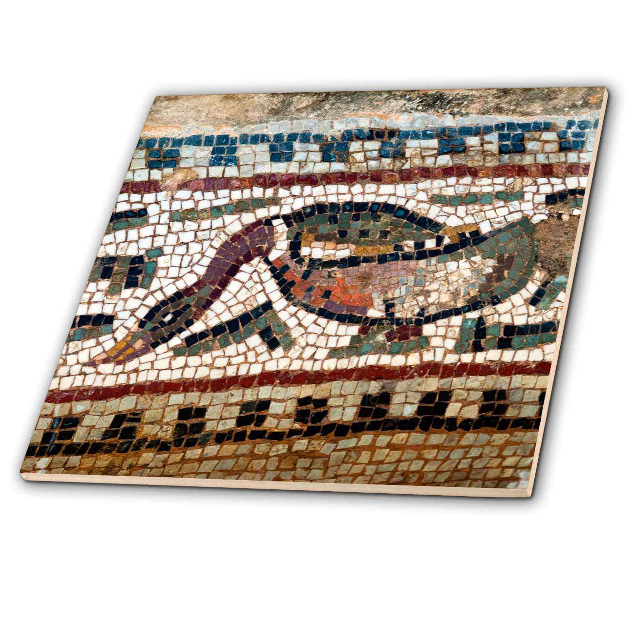 3dRose Danita Delimont - Artwork - Detail of the Amphitrite Roman mosaic, House of Amphitrite, Tunisia - 6 Inch Glass Tile (ct_276620_6)