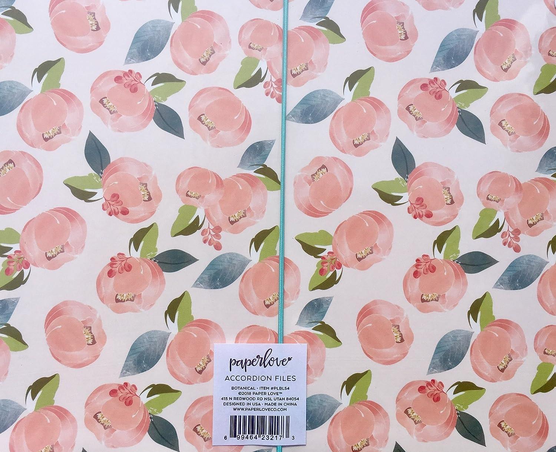 PLBL54 Paper Love Botanical Accordion File Holders