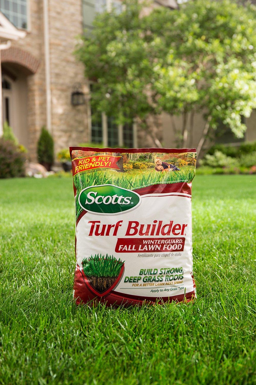 Scotts Turf Builder Lawn Food Image 2