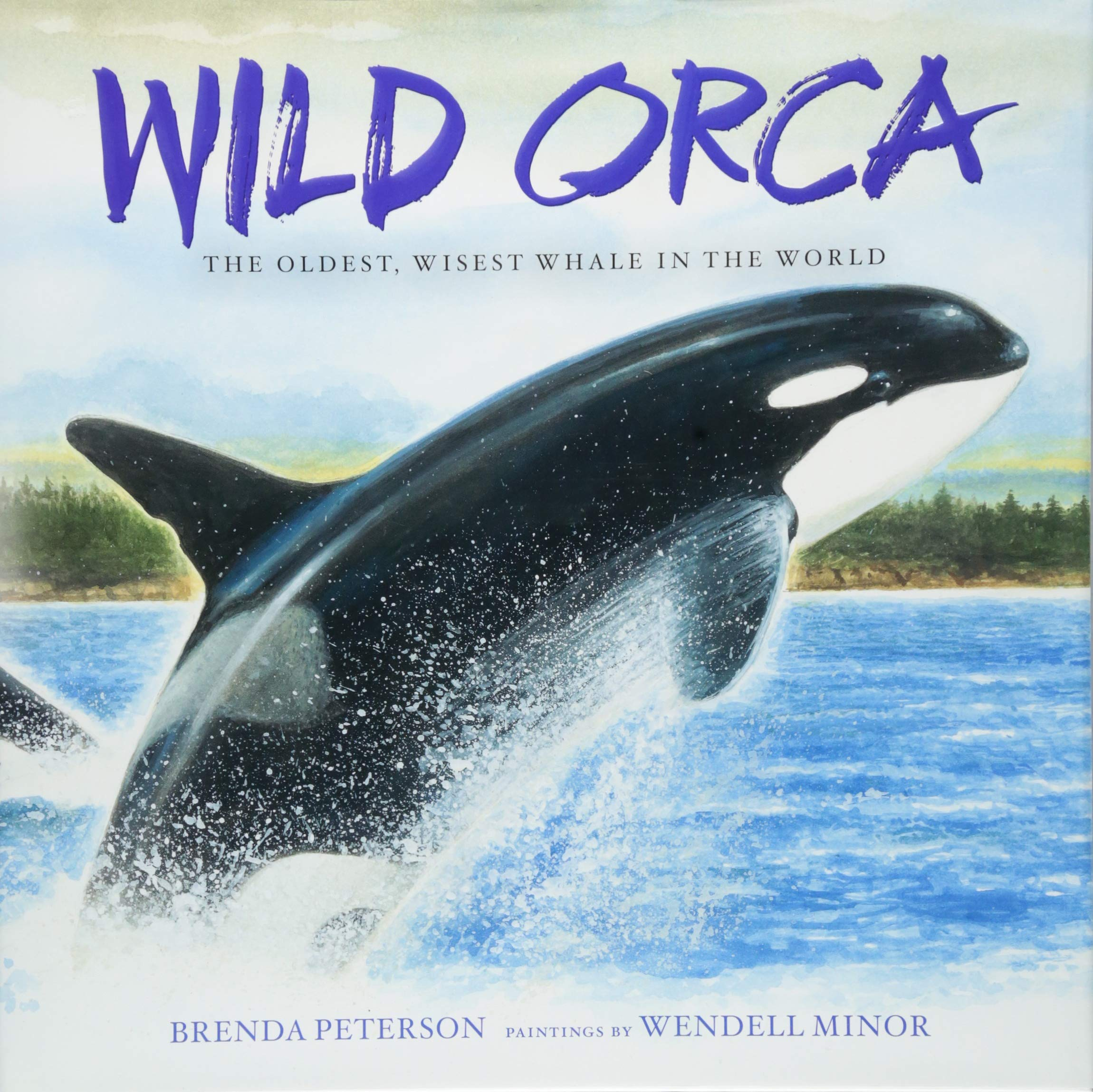 Wild Orca: The Oldest, Wisest Whale in the World: Brenda