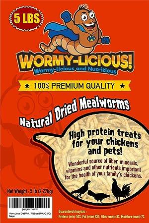 60 brins//Paquet Squirmy Wormy Mouches Mat/ériel Doux Worm Nymphe Truite P/êche /à la Mouche Leurres L-MEIQUN Couleur : Brown