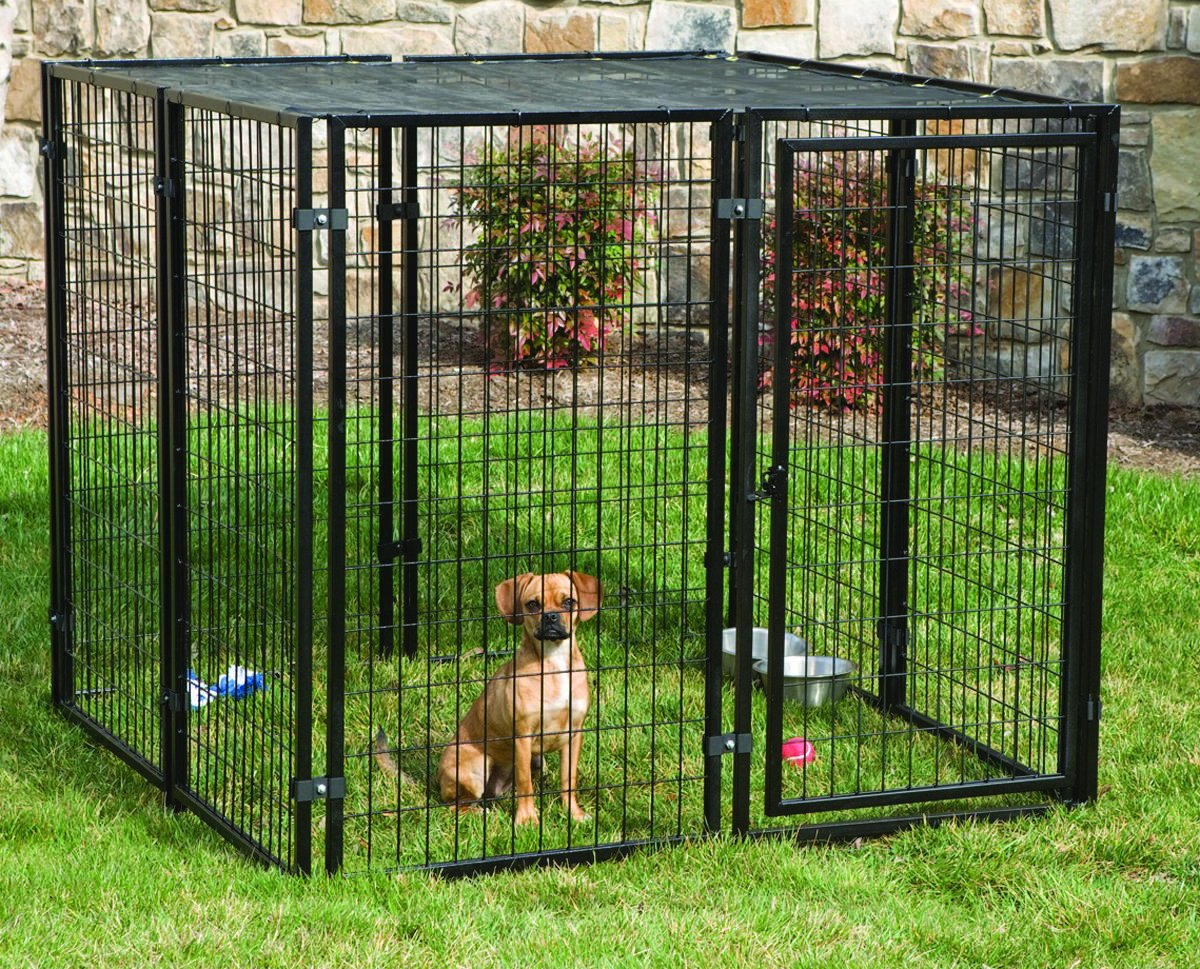 PetSafe Cottageview Boxed Kennel, 5-Foot-by-5-Foot-by- 4-Foot by PetSafe
