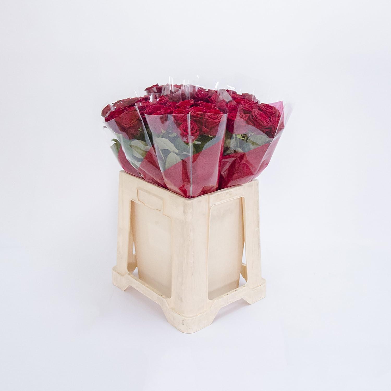 100 Rote Rosen im Bund, ca 50 bis 60cm +/- frisch vom Gärtner, sehr gut geeignet als Geschenk zum Valentinstag oder Muttertag, sehr elegante Schnittblume, Symbol von Liebe, Freude und Jugendfrische, Blumen, Bundware, grossblütig, Schnittblume, verführerischer Duft, Rosaceae, Für Freunde und Familie, Ideale Geschenkidee, Schöne Dekoration