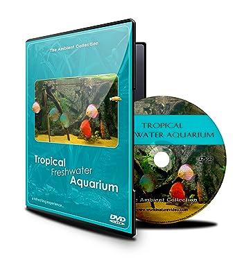 Acuario DVD- Acuario tropical de agua fresca - 100 minutos de Tanques HD/definación
