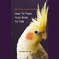 How to Train Your Birds to Talk: Tips to Train Your New Pet Birds