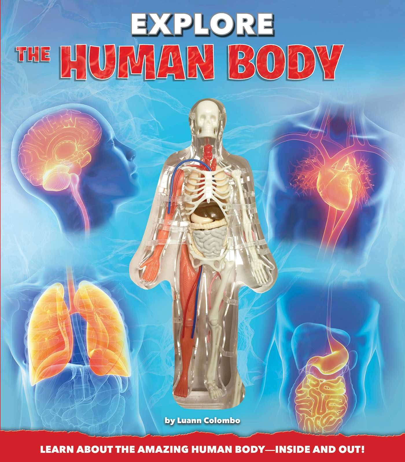 Explore The Human Body Luann Colombo Craig Zuckerman Jennifer