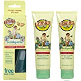 Jason Natural Products Earth's Best Toddler Toothpaste Strawberry & Banana (Set of 2)