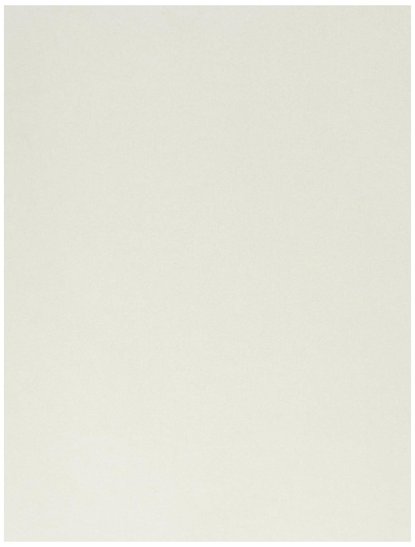 8 1/2 x 11 Paper - Quartz Metallic (50 Qty.) Envelopes Store