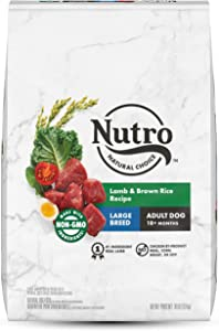 NUTRO NATURAL CHOICE Large Breed Adult Lamb & Rice Dry Dog Food
