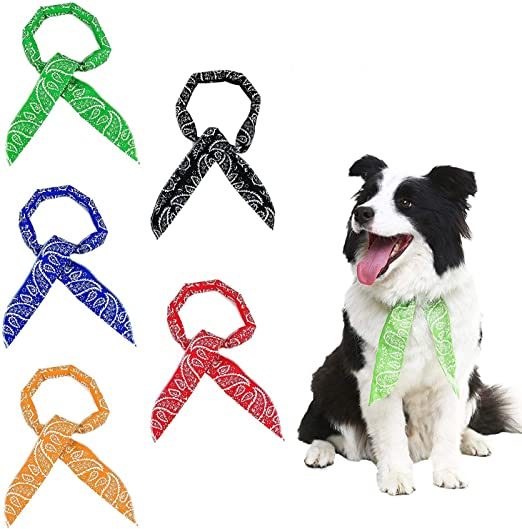 Scenereal Co. - Juego de 5 pañuelos de refrigeración para perros - Para refrescar durante el verano - Colores negro, rojo, azul, naranja y verde: Amazon.es: Productos para mascotas