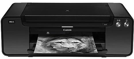 Canon Pixma Pro-1 - Impresora fotográfica A3+ (12 tintas ...