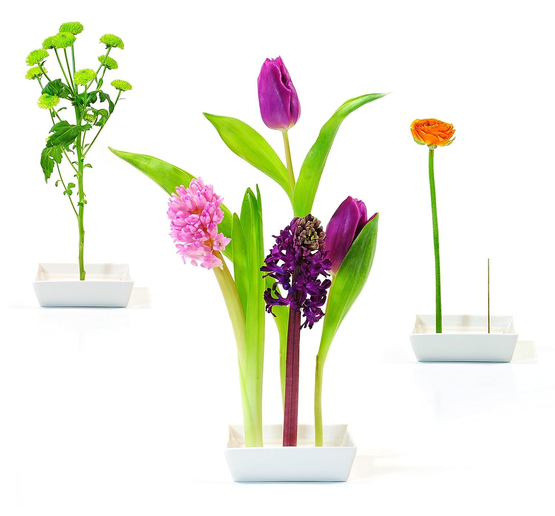 Amazon xxd florida vase home kitchen izmirmasajfo