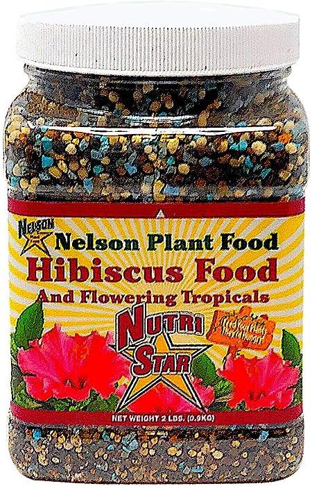 Top 6 Hibiscus Food