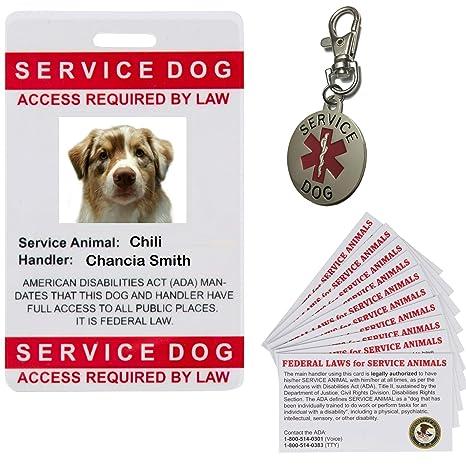 aebd531013dd Amazon.com : Service Dog Tag ID Card Custom with Photo Bundle : Pet Supplies