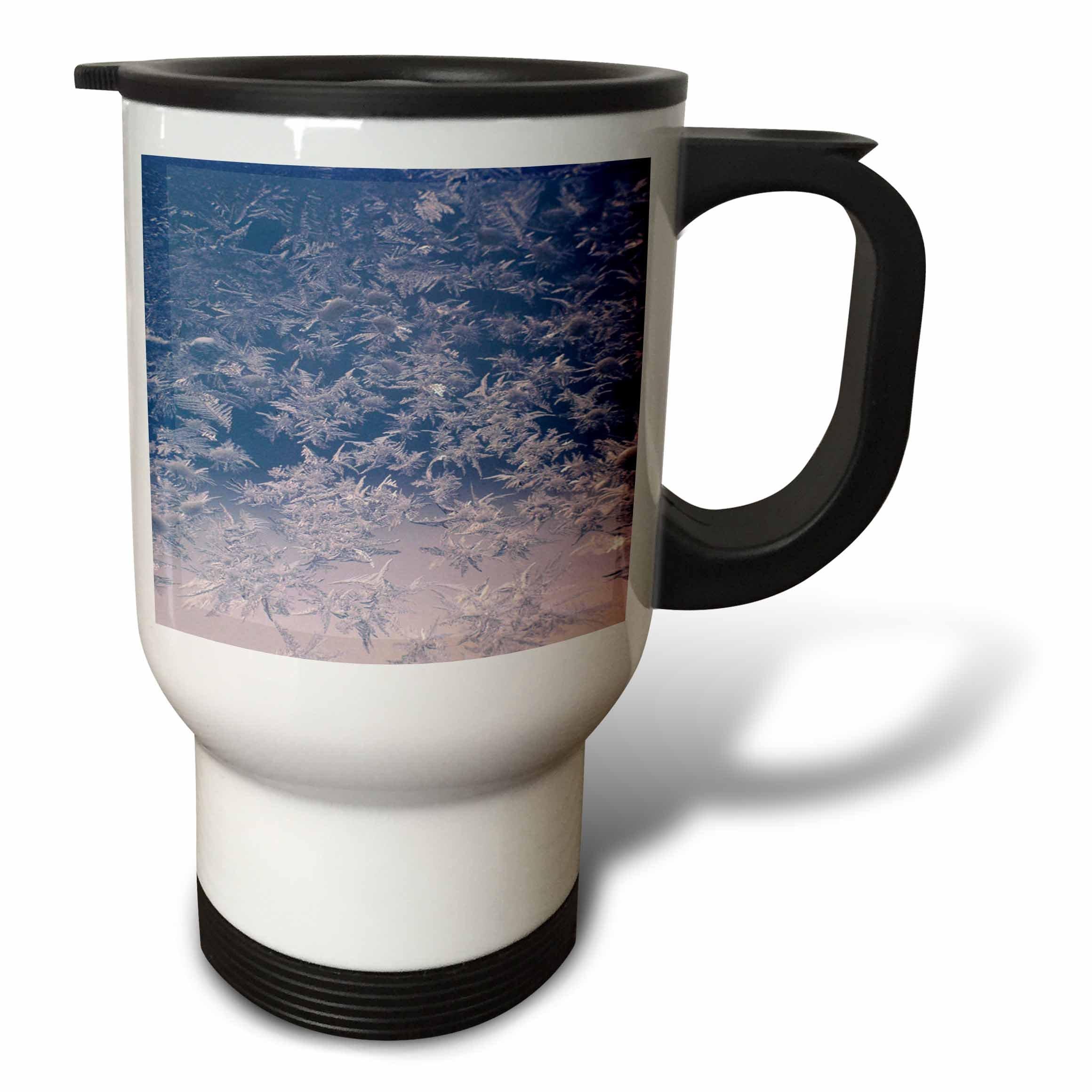 3dRose TDSwhite – Winter Seasonal Nature Photos - Window Snowflakes - 14oz Stainless Steel Travel Mug (tm_284946_1)