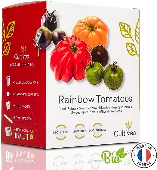 Cultivea – Mini Kit Huerto de Tomates Arcoíris – 100% Semillas Bio ...
