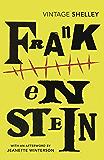 Frankenstein (Vintage Classics)