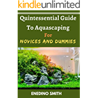 Quintessential Guide To Aquascaping For Novices And Dummies