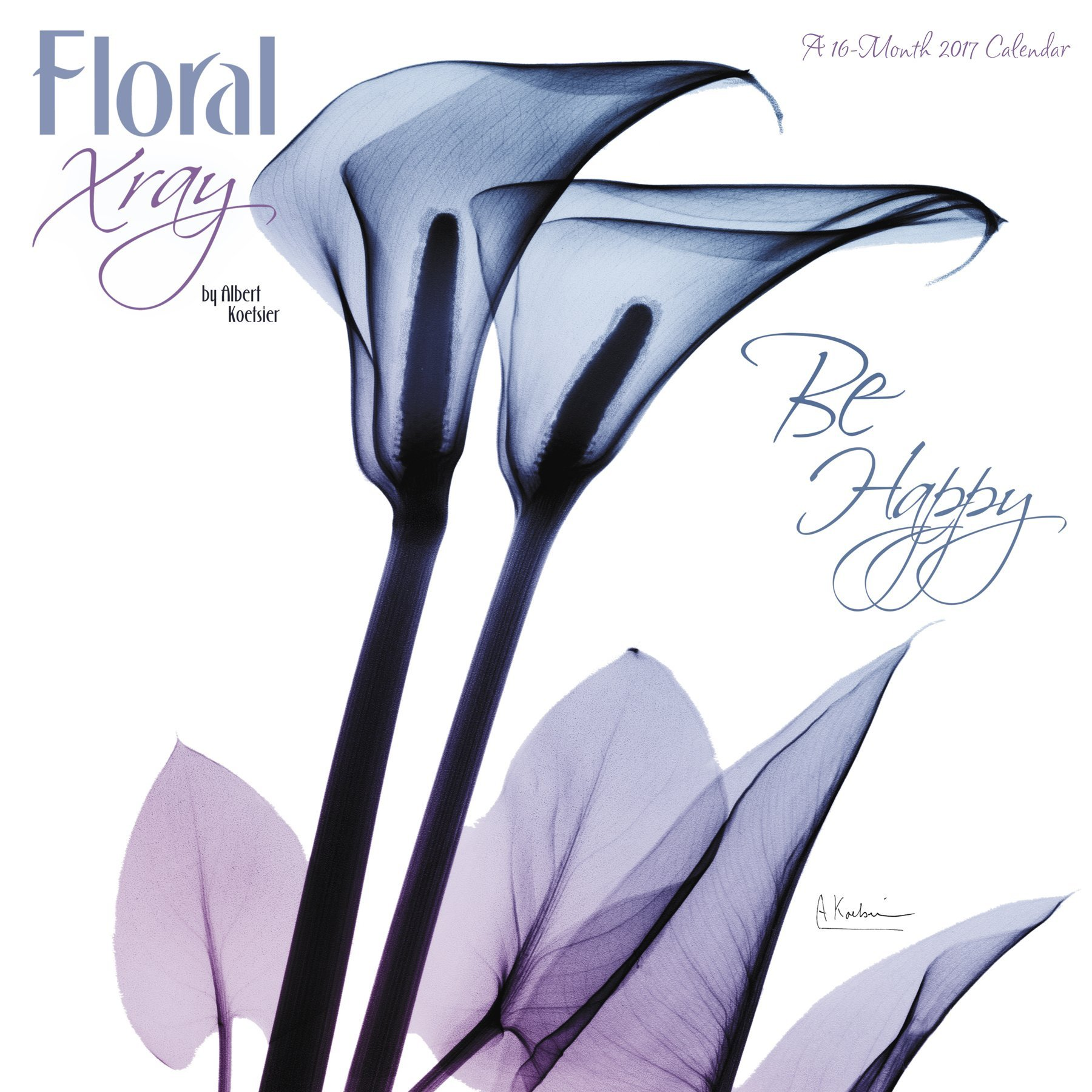 Floral Xray Wall Calendar Mead