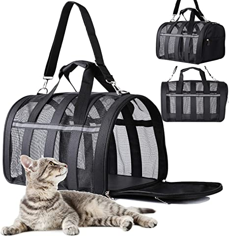 PATIO PLUS Portadores de viaje grandes para mascotas para perros y gatos - Caja para mascotas aprobada por la aerolínea de lados blandos, ligera y plegable - Ventanas de malla negra: Amazon.es: