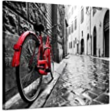 Artistic Path Cityscape Artwork Wall Decor: Bicycle Photographic Prints- Retro Vintage Red Bike in Black and White on…