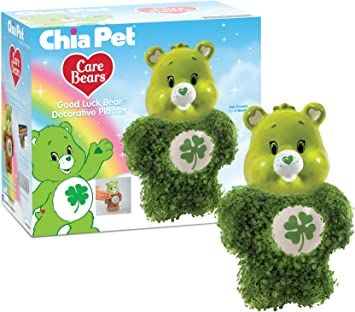 Amazon.com: Chia Pet Care Bears – Maceta decorativa de oso ...