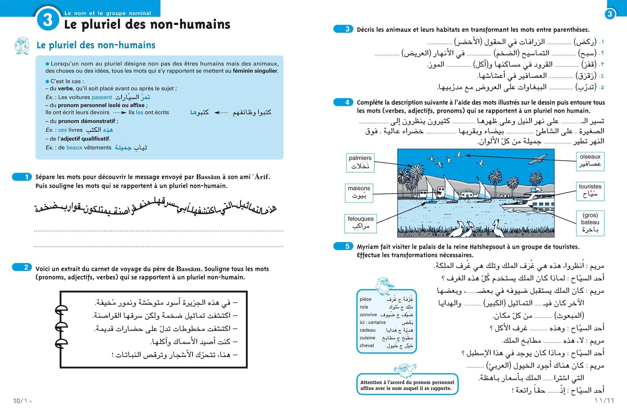 Arabe, 2e année : Niveau A2 du CECRL: Basma Farah Alattar: 9782401029668: Amazon.com: Books