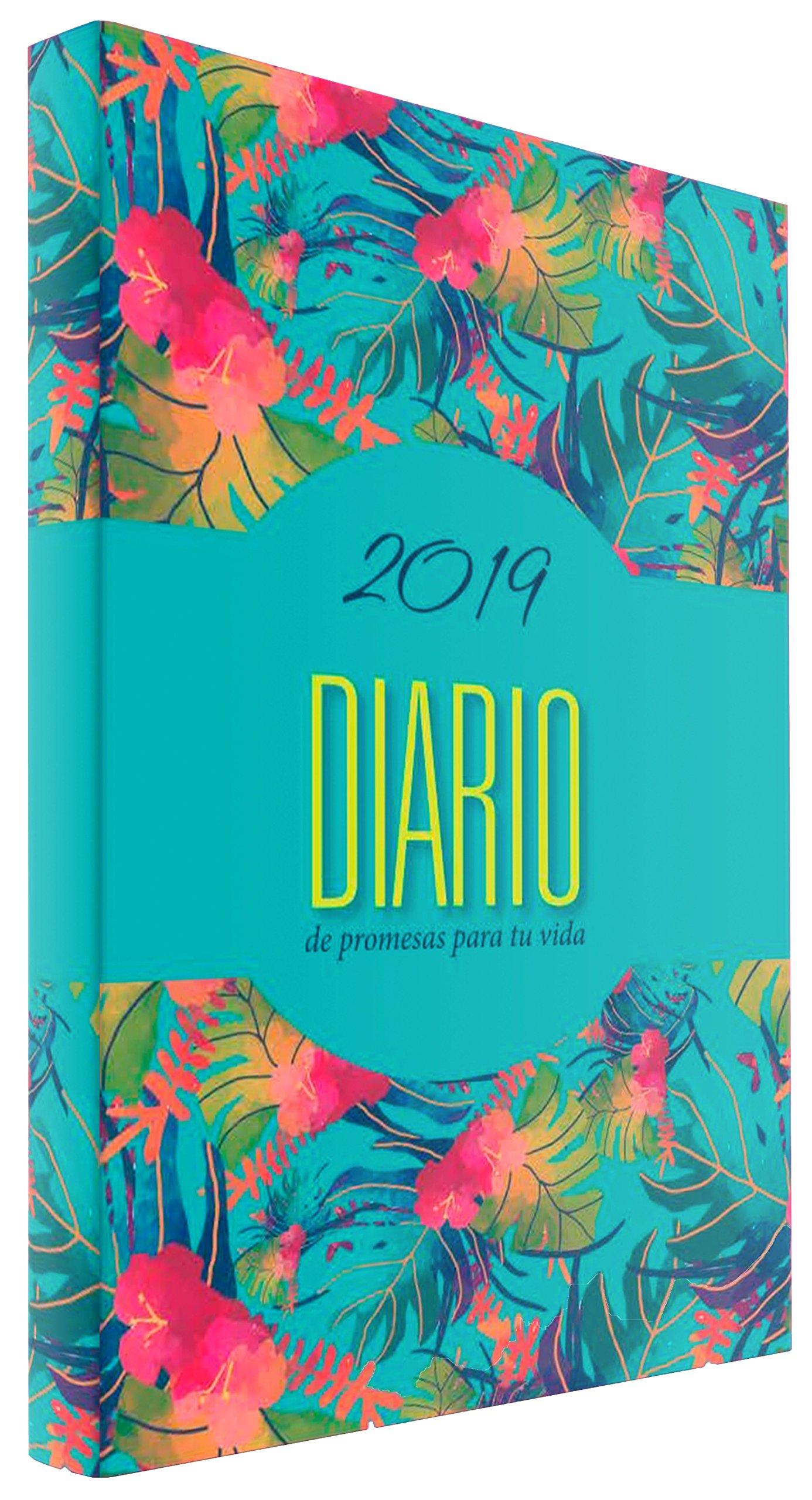 Agenda 2019 Diario de promesas - Fiesta (Spanish Edition ...