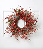 22 inch Red Spring Front Door Wreath Summer Wreath Mothers Day Gift